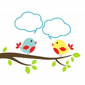 Two little birds with speech bubbles communication