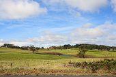 Australian Countryside, Cambewarra Nsw