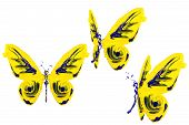 Yellow And Blue Paint Made Butterfly Set