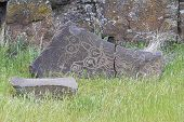 Native Indian Mythical Animals Petroglyph