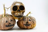 Human skulls and pumpkin on black background, Halloween day background.