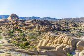 Scenic  Rocks In Joshua Tree National Park