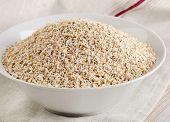 Healthy Oat Bran In A  White Bowl