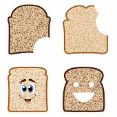 Vector Collection Of White And Brown Bread Slices