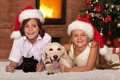Happy kids and their pets celebrating Christmas together - cat and dog laying with owners