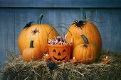 Pumpkins, spiders and Halloween candy on straw