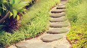 Beautiful Garden Path