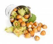 Hazelnuts Flowing From Tin Bucket