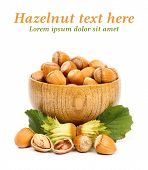 Hazelnuts In Wooden Pot