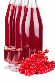 Ripe Red Currants And Liqueur