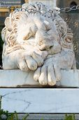 Sleeping Medici Lion Near Vorontsov Palace