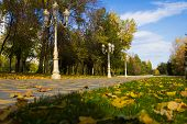 Autumn City Park - Stock Photos
