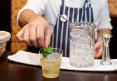 Bartender is adding mint to the cocktail at bar counter