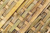 Bamboo Textrue
