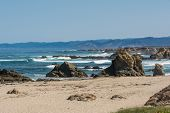 The beach and the ocean in Fort Bragg
