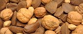 Mixed Nuts In Shells Background