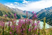 pic of shan  - Spectacular scenic Big Almaty Lake Tien Shan Mountains in Almaty KazakhstanAsia at summer - JPG