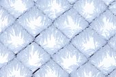 Fence With Frost 1
