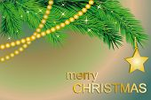 Fir Tree With Gold Star
