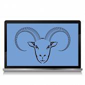 Ram On The Laptop Screen