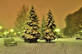 Romantic Winter Evening In A City Park