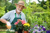 Portrait of senior man gardening