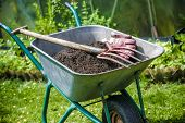 Pitch fork and gardening gloves in wheelbarrow full of humus soil