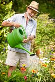 Senior man watering the flowers in  the garden