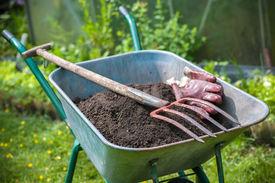 stock photo of humus  - Pitch fork and gardening gloves in wheelbarrow full of humus soil - JPG