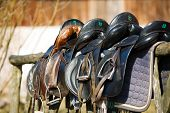 stock photo of girth  - A saddles laying on the rustic fence in warm sunlight - JPG