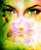 pic of face painting  - color painting pair of beautiful blue women eyes beaming up enchanting from behind a blooming rose lotus flower with birds on multicolor background eye contact - JPG