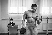 image of exercise  - Dumbbell exercises - JPG