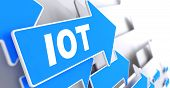 image of blue things  - IOT Direction Sign  - JPG