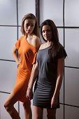 image of lesbian  - Beautiful lesbian flirting couple in the studio - JPG