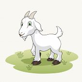 image of baby goat  - Cute cartoon goat on the grass background - JPG