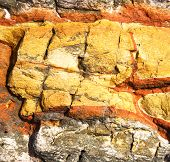 stock photo of lichenes  - abstract lanzarote spain texture of a broke stone and lichens - JPG