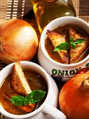 picture of onion  - Famous onion soup with onions and olive oil in the background close up - JPG