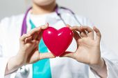 stock photo of cardiology  - Female medicine doctor hands holding toy heart in front of chest closeup - JPG