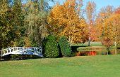 White Bridge With Autumn Reflection
