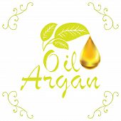 picture of drop oil  - Oil drop Argan oil cosmetic falling from leef with decoration elements isolated on white background - JPG