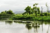 pic of wetland  - Gyeongpo lake park with the restored wetlands reflecting on the small river running nearby the lake - JPG