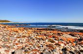 stock photo of shipwreck  - Shipwreck along the coast of the Cape of Good Hope South Africa - JPG