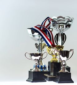 picture of trophy  - A collection of trophies with a blue - JPG