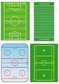 Field soccer,  lacrosse, hockey, football.