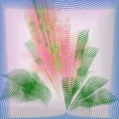 Pretty Pink Flower Abstract