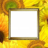 Gold Frame On Sunflower Background