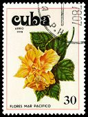 Vintage  Postage Stamp. Tues Flowers Pacifist. 1.
