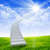 White ladder extending to a bright sky against a background of green grass. Symbol of the road to he