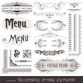 Vector decorative ornate design elements & calligraphic page decorations