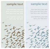 two vector cards with birds' silhouettes
